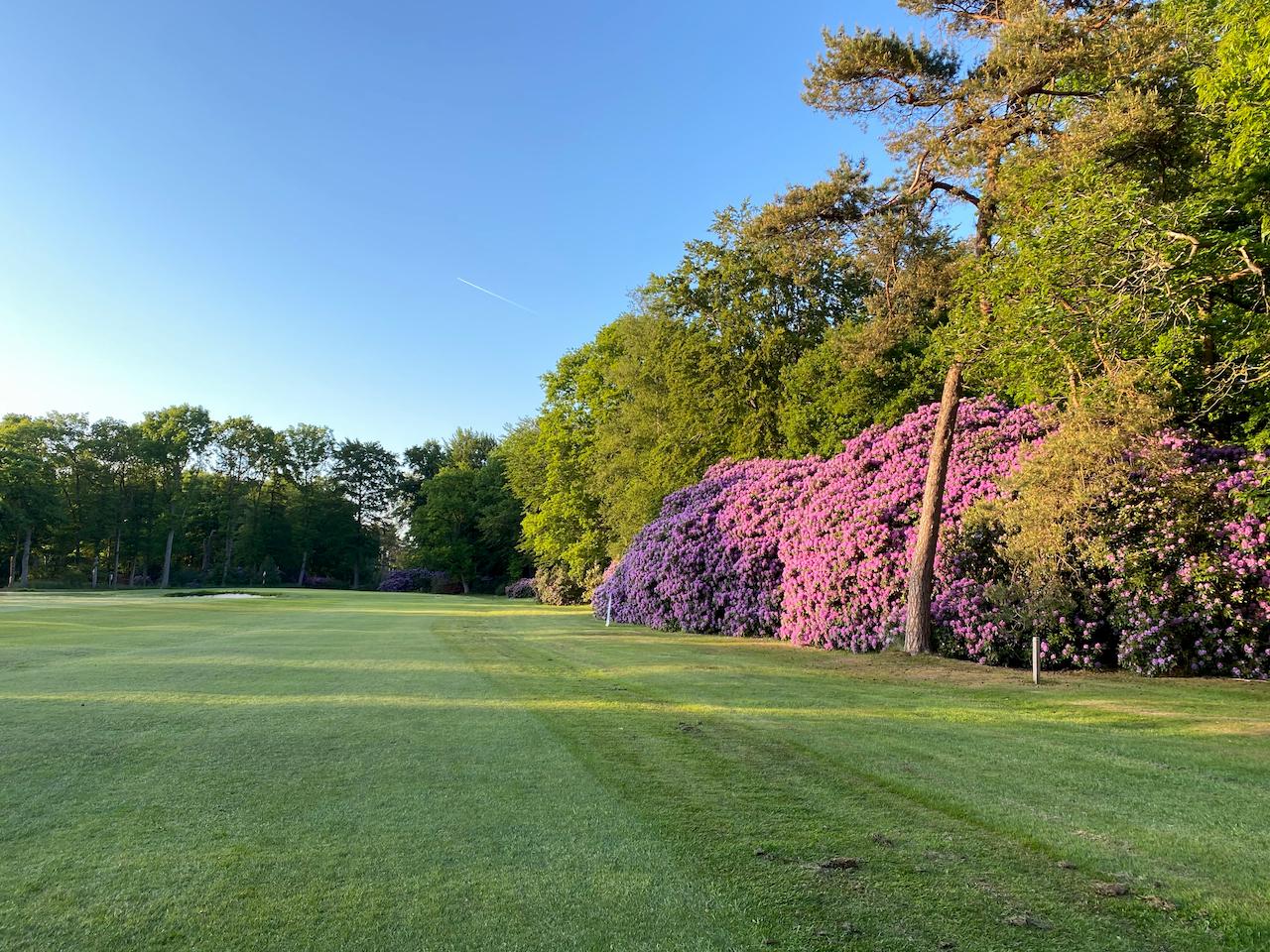 Noord-Nederlands natuurlijkste golfbaan